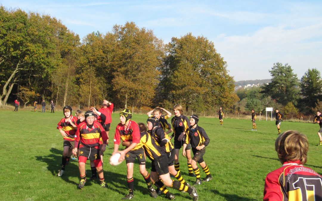 Cinderford Under 13's 41-7 South Woodham Ferrers Under 13's