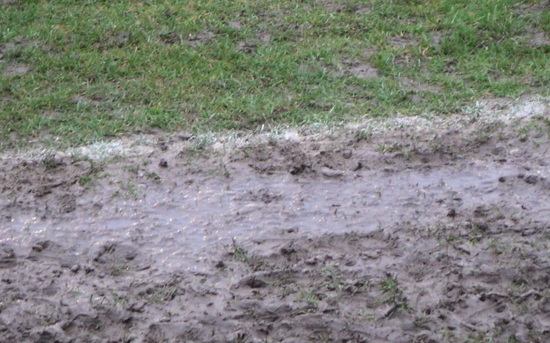 Cinderford v Wharfedale postponed
