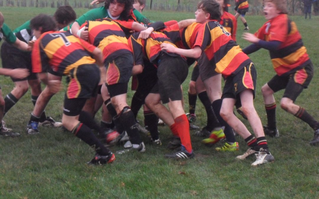Cinderford Under 15's v Dursley (County Cup)